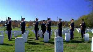 Everest Funeral Concierge Services Tip: Veterans and Funerals  | The Balancing Act [Video]