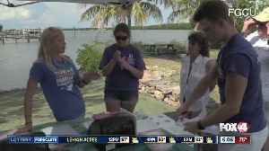 Scientists take water samples from Fort Myers Beach [Video]