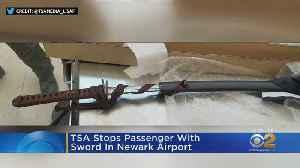 TSA Stops Passenger With Sword At Newark Airport [Video]