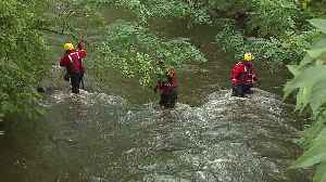 Searchers Scour River for Missing Man Who May Have Jumped in to Save Dog [Video]