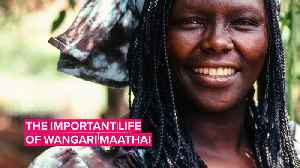 News video: Nobel Peace Winner: Why everyone should know Wangari Maathai