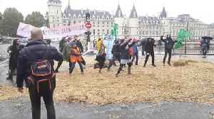 News video: Activists take part in flashmob in Paris as Extinction Rebellion protests go international