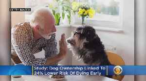 Dog Ownership Linked To 24% Lower Risk Of Dying Early, Research Shows [Video]