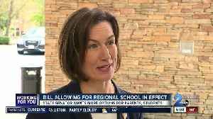 Regional schools concept could help parents in both Howard and Carroll counties [Video]