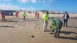 Bolsonaro: Brazil Is Not Responsible For Oil Spill [Video]