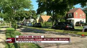 Police: 'No human remains found' at home near 24th and Glendale [Video]