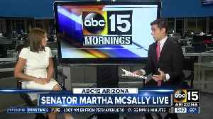 Sen. Martha McSally sits down with ABC15 [Video]