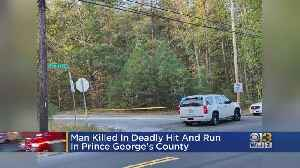 Man Killed In Hit-And-Run In Prince George's County [Video]