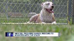 New bill requires animal rescue organizations to register with the state [Video]