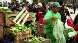 Poverty collides with policy in Argentine race [Video]