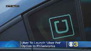 Uber To Launch 'Uber Pet' Option In Philadelphia [Video]