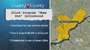 Pilot Program 'Uber Pet' Introduced [Video]