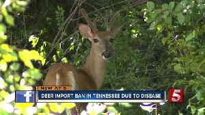 Deer import ban in Tennessee due to Chronic Wasting Disease [Video]