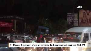 1 dead after tree falls on bus following heavy rains in Pune [Video]