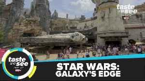 TSTV Episode 1: Monkey Island, Buddhist Temple & Star Wars Galaxy's Edge [Video]