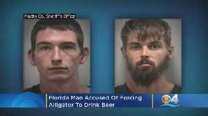 News video: Florida Man Accused Of Forcing Alligator To Drink Beer