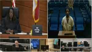 Arrest Made In Death Disabled Dog Zorra in Oakland Park [Video]