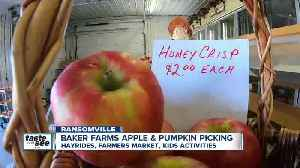 Soggy spring brings lots of juciy apples to Baker Farms [Video]