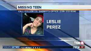 Missing Collier County teen [Video]