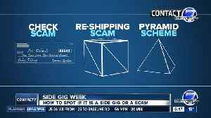 BBB reports employment scams are the greatest risk to consumers [Video]