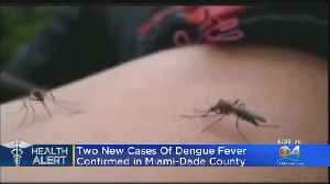 New Dengue Cases Prompt Miami-Dade Health Officials To Issue Health Alert [Video]