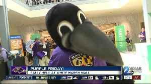 Purple Friday at White Marsh Mall [Video]