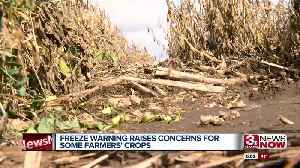 Freeze Concerns for Crops [Video]