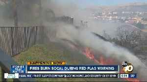 Fires burn in SoCal during dangerous Red Flag Warning [Video]