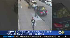 85-Year-Old Woman Pushed Down, Robbed On UWS [Video]