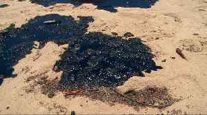 Brazil oil spill: 2,000km of northern beaches contaminated [Video]