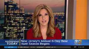 Bear Hunting Season Begins In New Jersey [Video]
