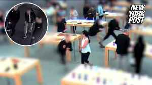 Idiotic thieves steal 29 Apple Watch store models [Video]