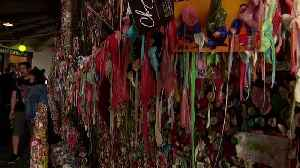 Sticky situation: Seattle's 'gum wall' delights and disgusts in equal measure [Video]