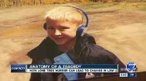 Calls for change, dedicated family law courts, after Lone Tree murder-suicide [Video]