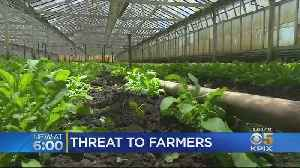 Half Moon Bay Farmers Facing New Challenges [Video]
