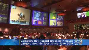 Gamblers Bet Recording-Breaking Amount On Sports In New Jersey [Video]