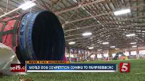 World Championship for dog agility held in Murfreesboro Oct. 23-27 [Video]