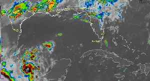 Tropical Disturbance in the Gulf [Video]