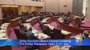 City Council Black Caucus Proposes Postponing Recreational Marijuana For 6 Months Citing Zero Black Ownership [Video]