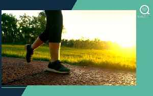 How Does a Daily Walk Help With Insulin Sensitivity? [Video]