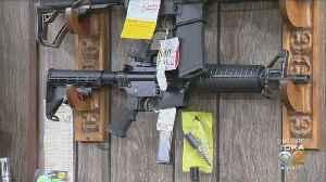 Gun Rights Advocates Get Their Day In Court [Video]