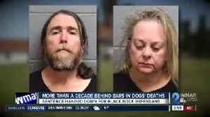 More than a decade behind bars in dogs' deaths [Video]