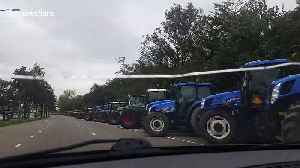 Hundreds of tractors line the streets of The Hague for Farmer's protest [Video]