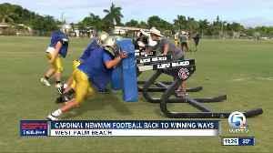 Cardinal Newman Football back to winning ways [Video]
