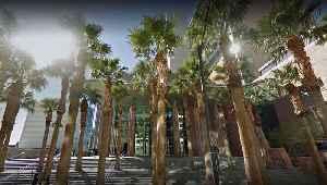 Las Vegas City Council approves domestic violence ordnance [Video]
