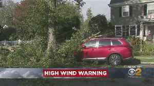 High Wind Warning In Effect Until Friday [Video]