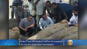 More Than 20 Sealed Coffins Uncovered At Ancient Egyptian Necropolis [Video]