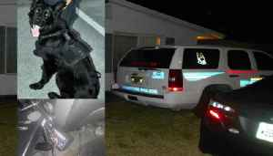 Animal cruelty charge against Sebastian officer dismissed [Video]