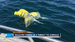 Master's student, others try to curb balloon debris in the Great Lakes, elsewhere [Video]