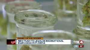 Should weed be legal in Florida? [Video]